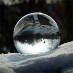 "Image for ""The Snow Ball"""