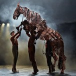 "Image for ""War Horse"""